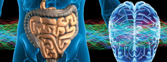 Kako bakterije manipuliraju vašimmozgom