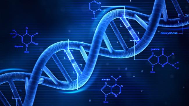 Vaši geni ne određuju vašusudbinu!