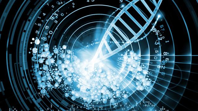 DNK prenosi sjećanja prethodnihgeneracija