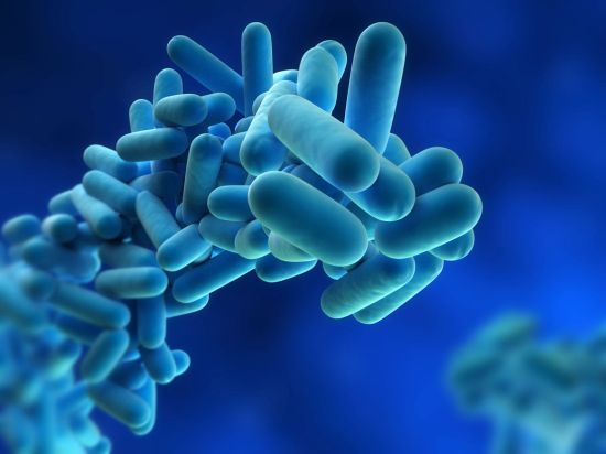 probiotici probiotics