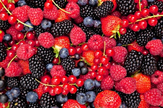 antioksidanti 3 os uma