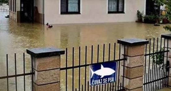 bosanski-humor-i-u-teskim-vremenima-cuvaj-se-morskog-psa