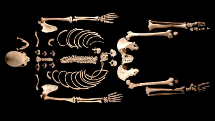 Kratka zanimljivost: Izoliran najstariji ljudskigenom