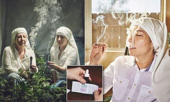 redovnice uzgoj marihuana os uma