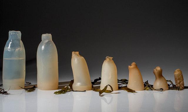 Zaštita okoliša – biorazgradiva boca napravljena odalgi