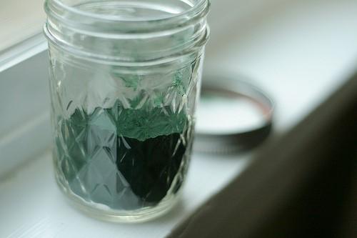 alge os uma u čaši