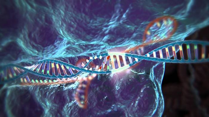 CRISPR tehnika uređivanja gena po prvi put testirana načovjeku