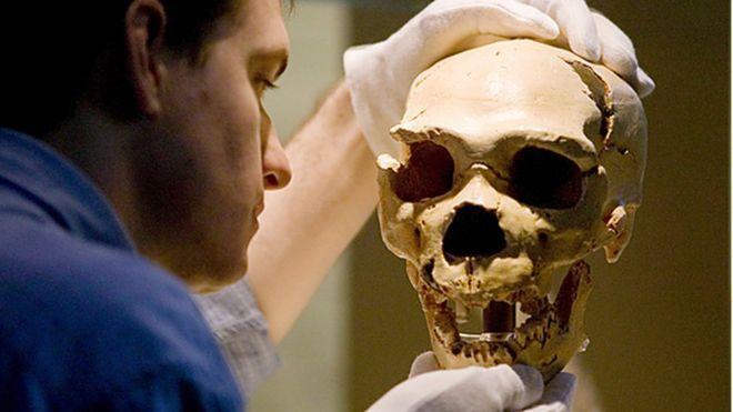 Neandertalci su koristili 'aspirin' i 'penicilin' a neki su bili ivegetarijanci