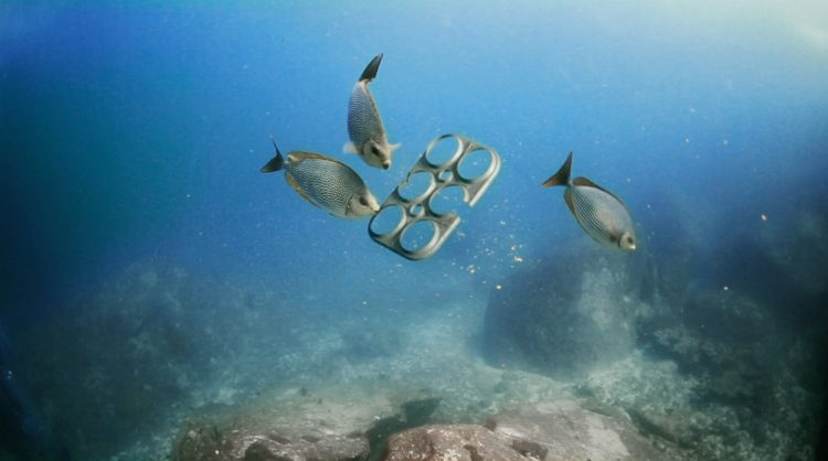 Rezultati studije: ribe radije jedu mikroplastiku odplanktona!