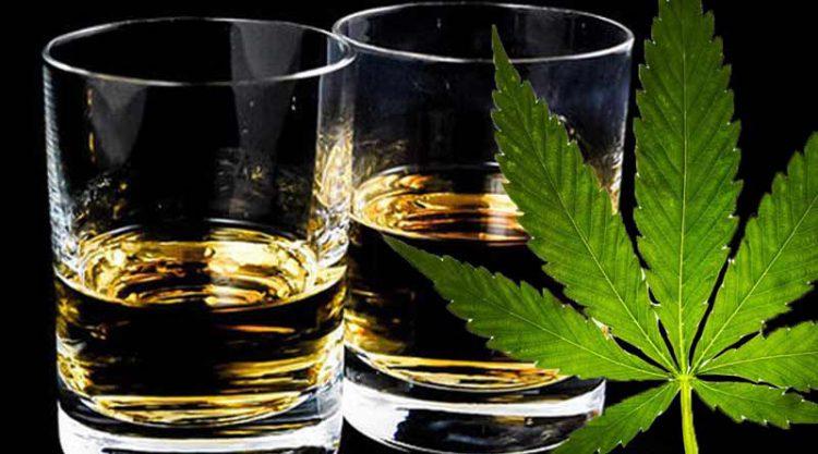 Alkohol ili kanabis – što više škodizdravlju?