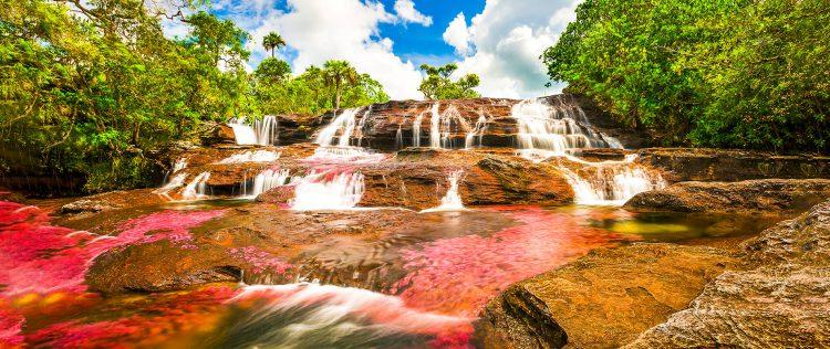 Caño Cristales – rijeka proizašla izraja